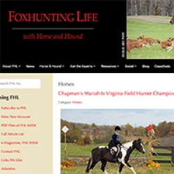 Chapman's Mariah Is Virginia Field Hunter Champion