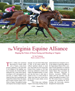 The Virginia Equine Alliance