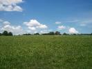 Horse Board-private farm